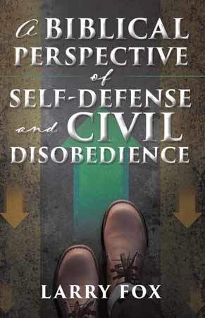 A Biblical Perspective book cover
